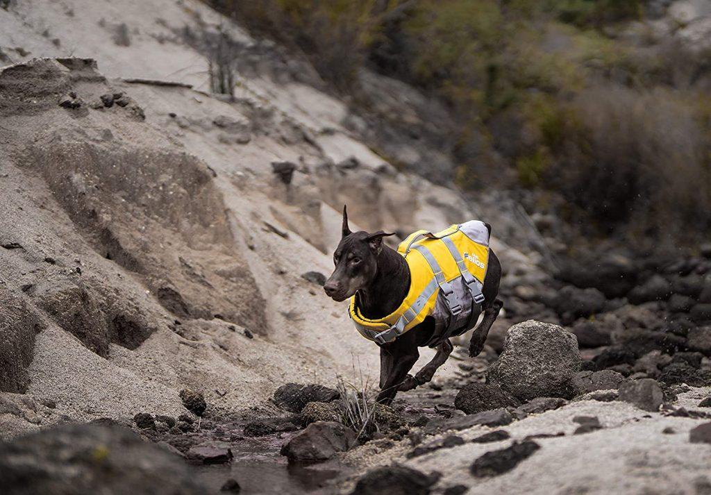 precio de chaleco salvavidas para perros low cost